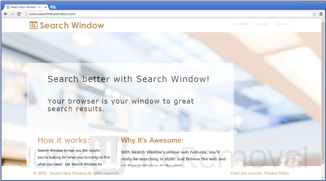 Search New Window