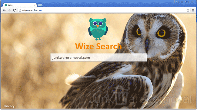 WizeSearch