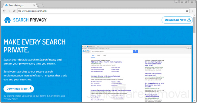 PrivacySearch.link